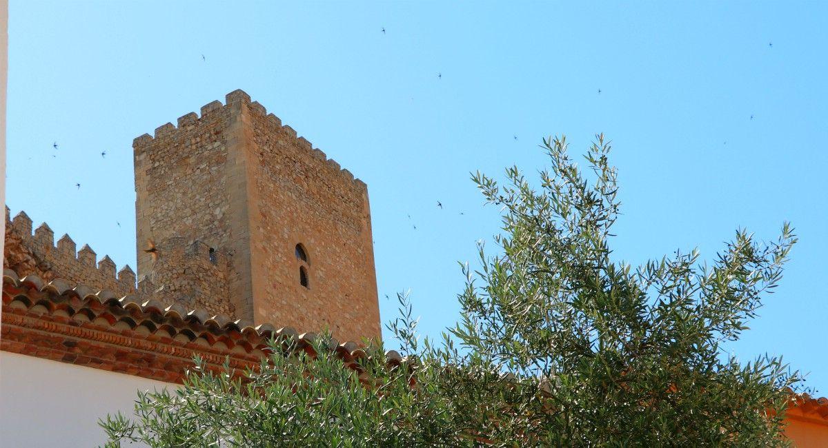 Castillo de Almansa visitas mes de septiembre