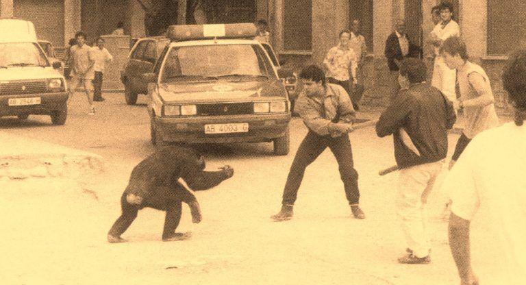 Mono Circo Albacete