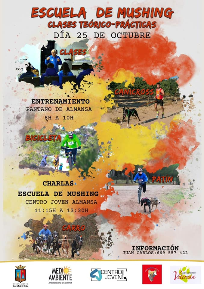 Mushing Almansa